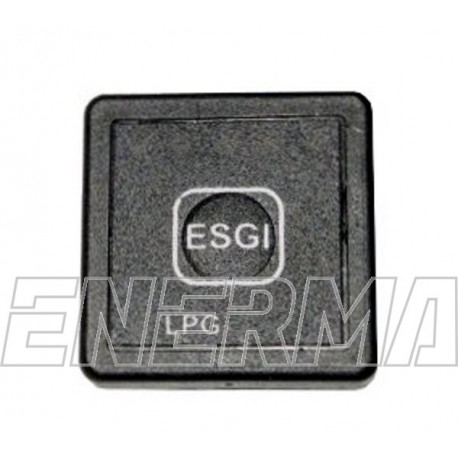 ESGI II switch