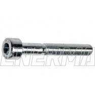 Screw for multivalve Tomasetto-00  M5x40