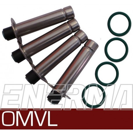Repair kit for injectors OMVL  cod:900141