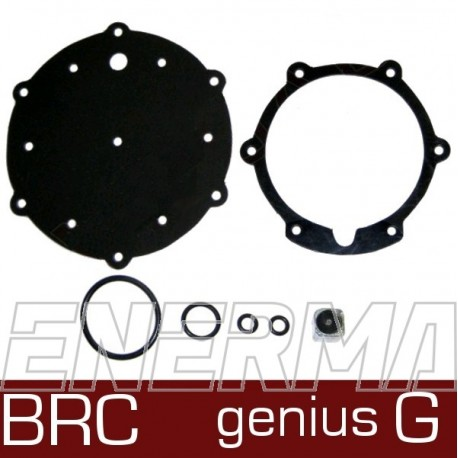 BRC Genius G repair kit / replacement