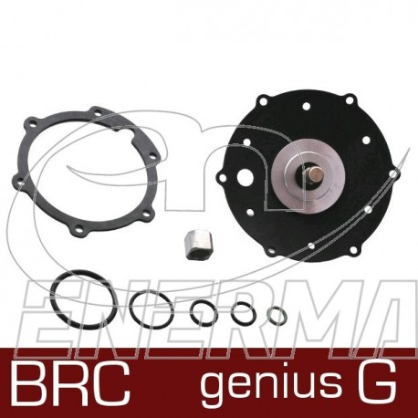 BRC Genius G  cod.02RR00501006 / original repair kit