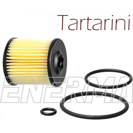 Filter / cartidge Tartarini E08G  34/31 with o-rings
