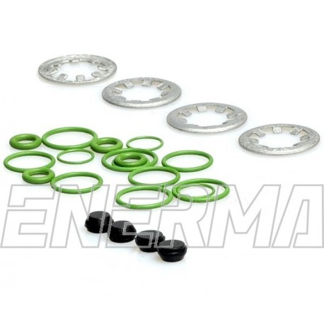 Repair kit for injector rail LOVATO LP