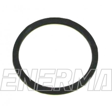 Seal for multivalve Tomasetto/BRC