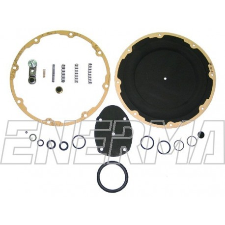 LANDI RENZO SE81 el. original repair kit
