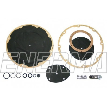 LANDI RENZO RENZOMATIC original repair kit
